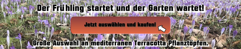 Frühling Garten Terracotta Dekorieren