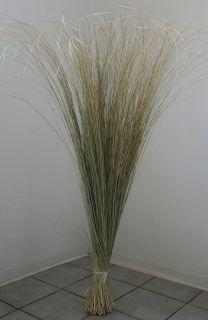 """Strandhafer Trockenblumen Dekogras Schilf """"Savanne"""""""" ca. 120 cm"""