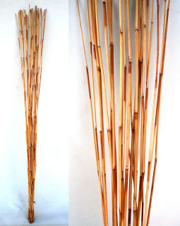 Bambus Ast Rohr Stock Bamboo Dekostab River Cane Bund 105 CM Deko Pflanzen Natur